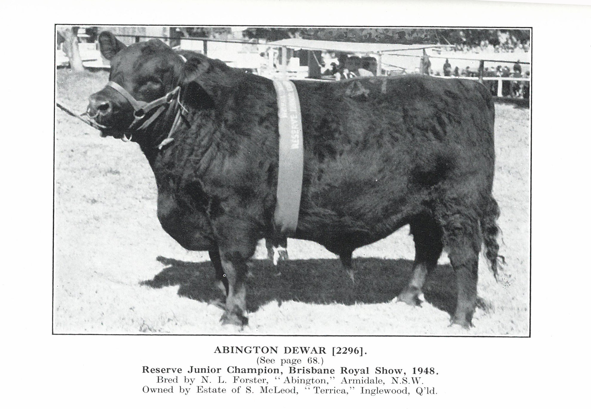 Abington Dewar