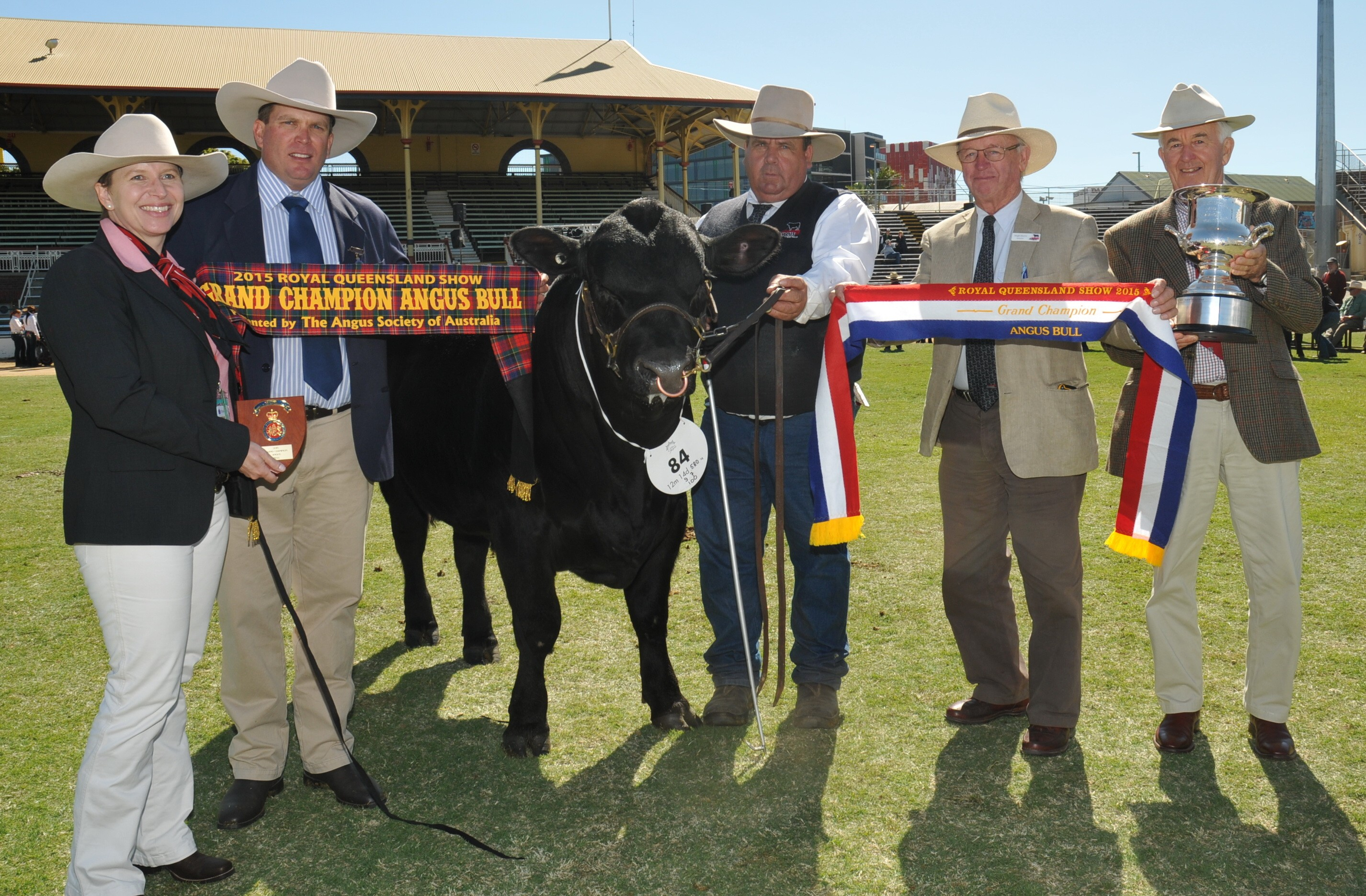 EKKA 2015 Grand Champion Angus Bull