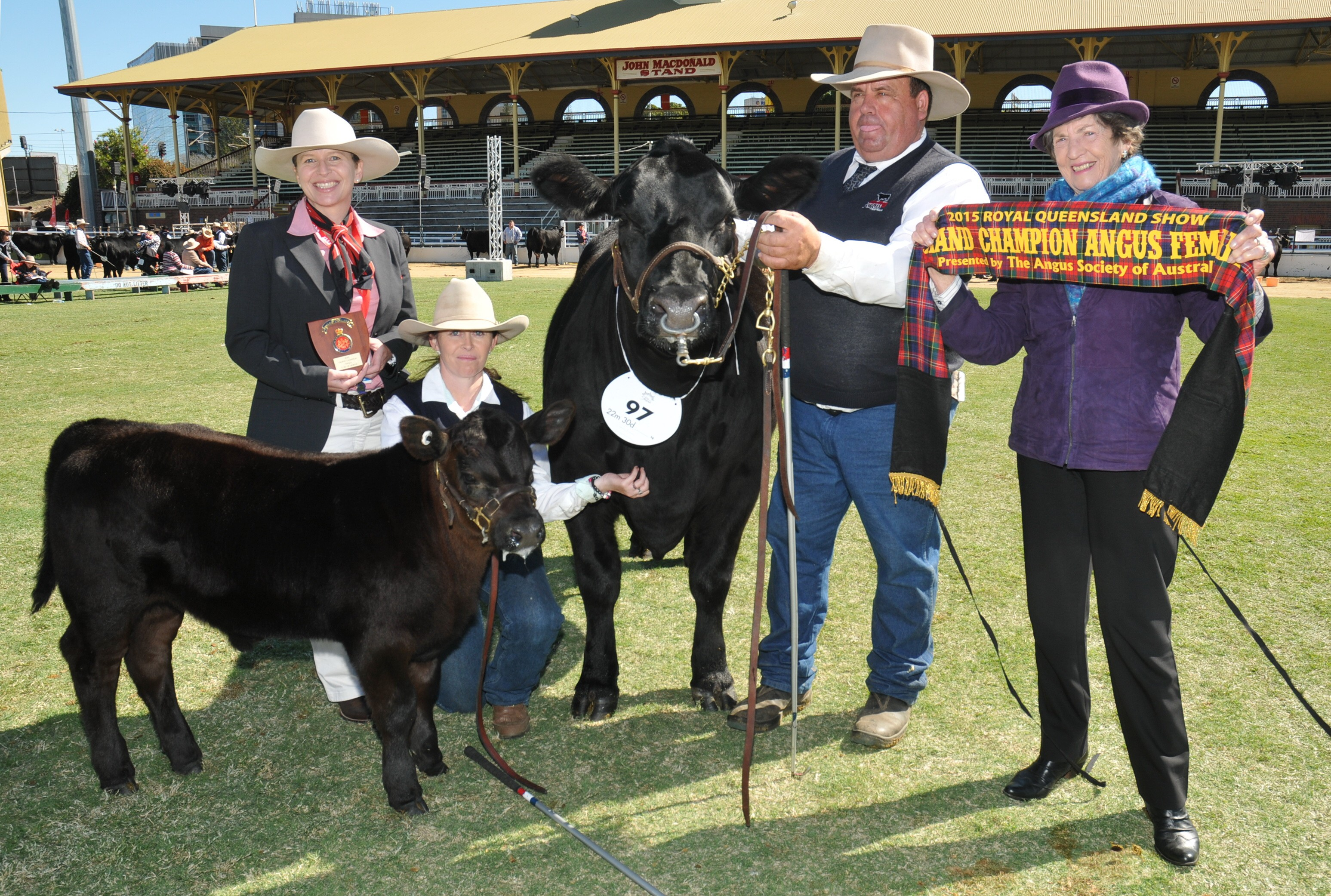 EKKA 2015 Grand Champion Angus Female