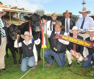 EKKA 2010 Grand Champion Angus Female