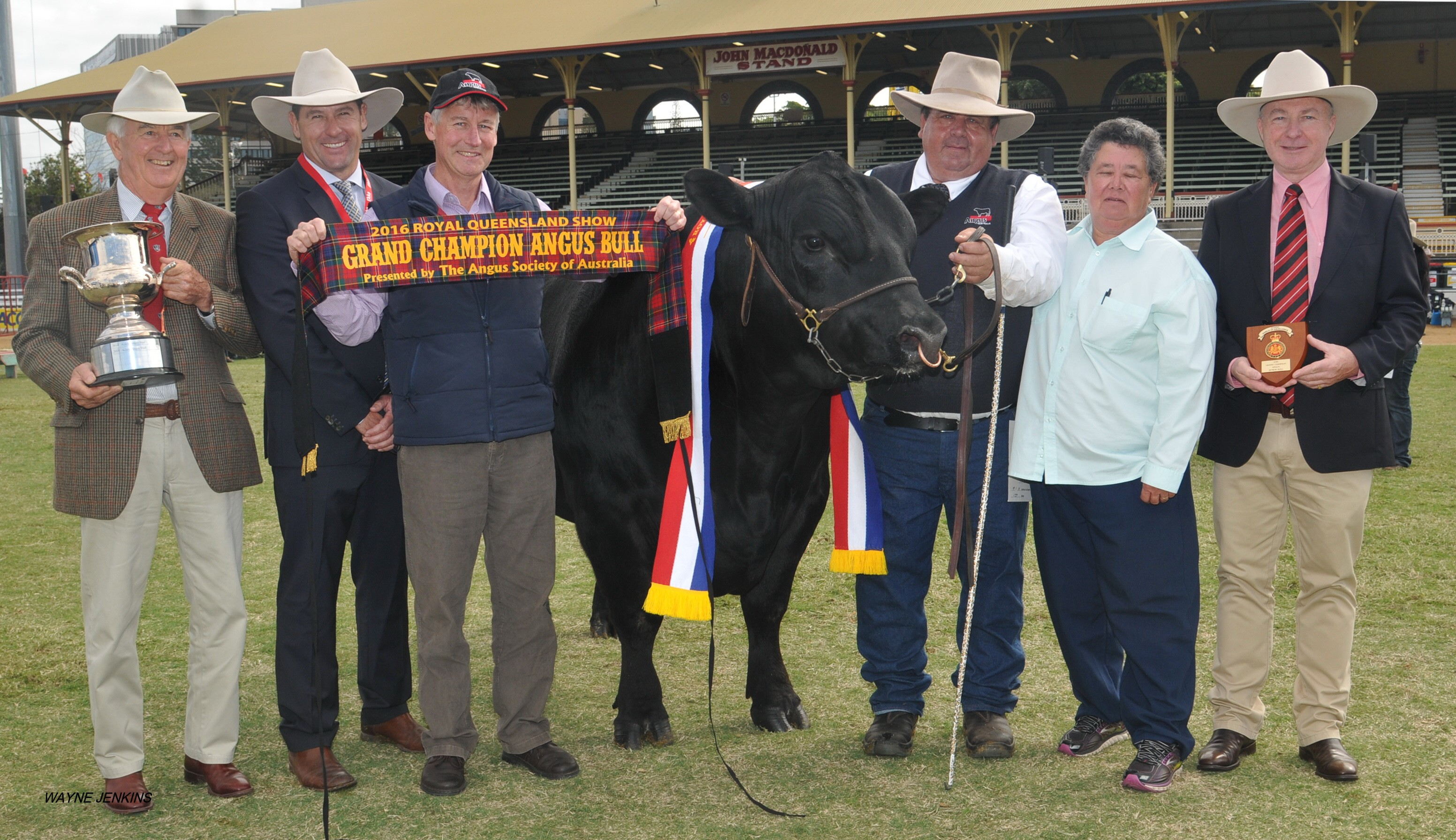 EKKA 2016 Grand Champion Angus Bull