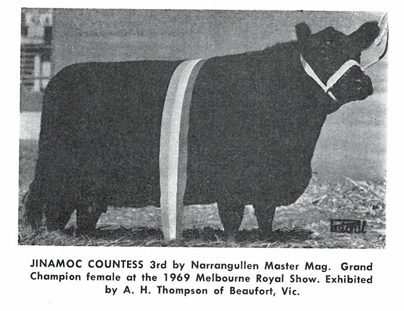 Jimanoc Countess 3rd Melb 1969