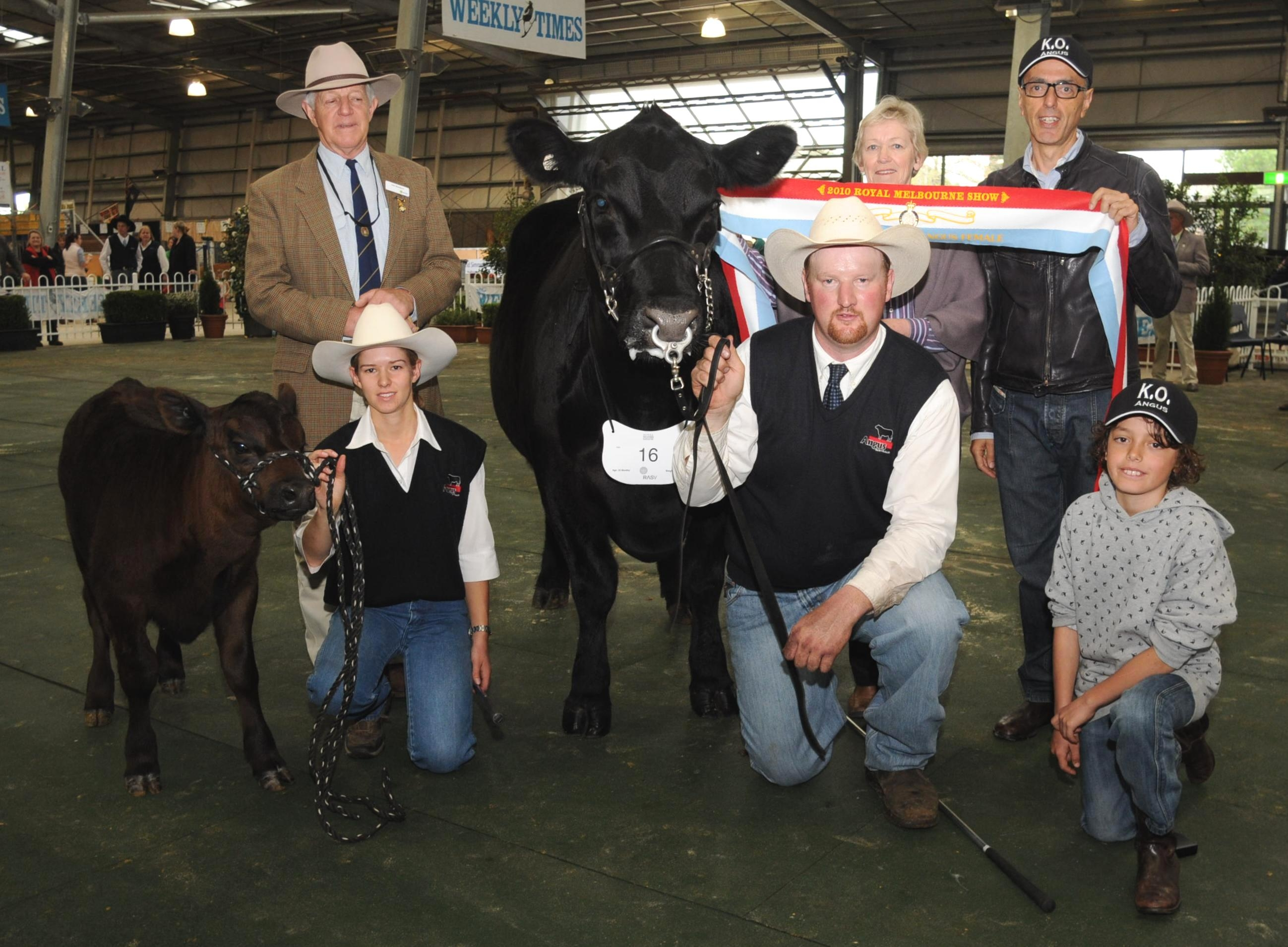 Grand Champion Angus Female 2010 Melbourne Royal