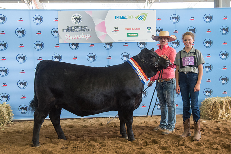 Champion Junior Heifer