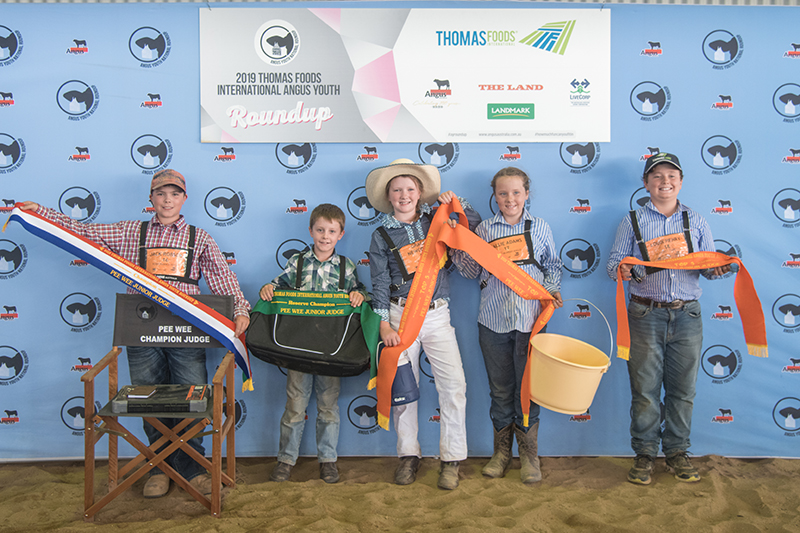 Pee Wee Junior Judging Place Getters