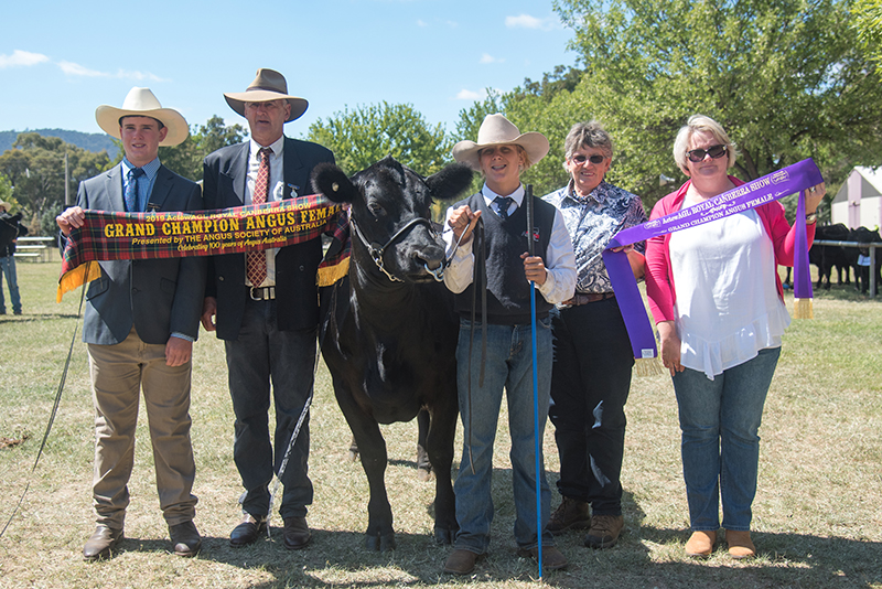 Grand Champion Female - 