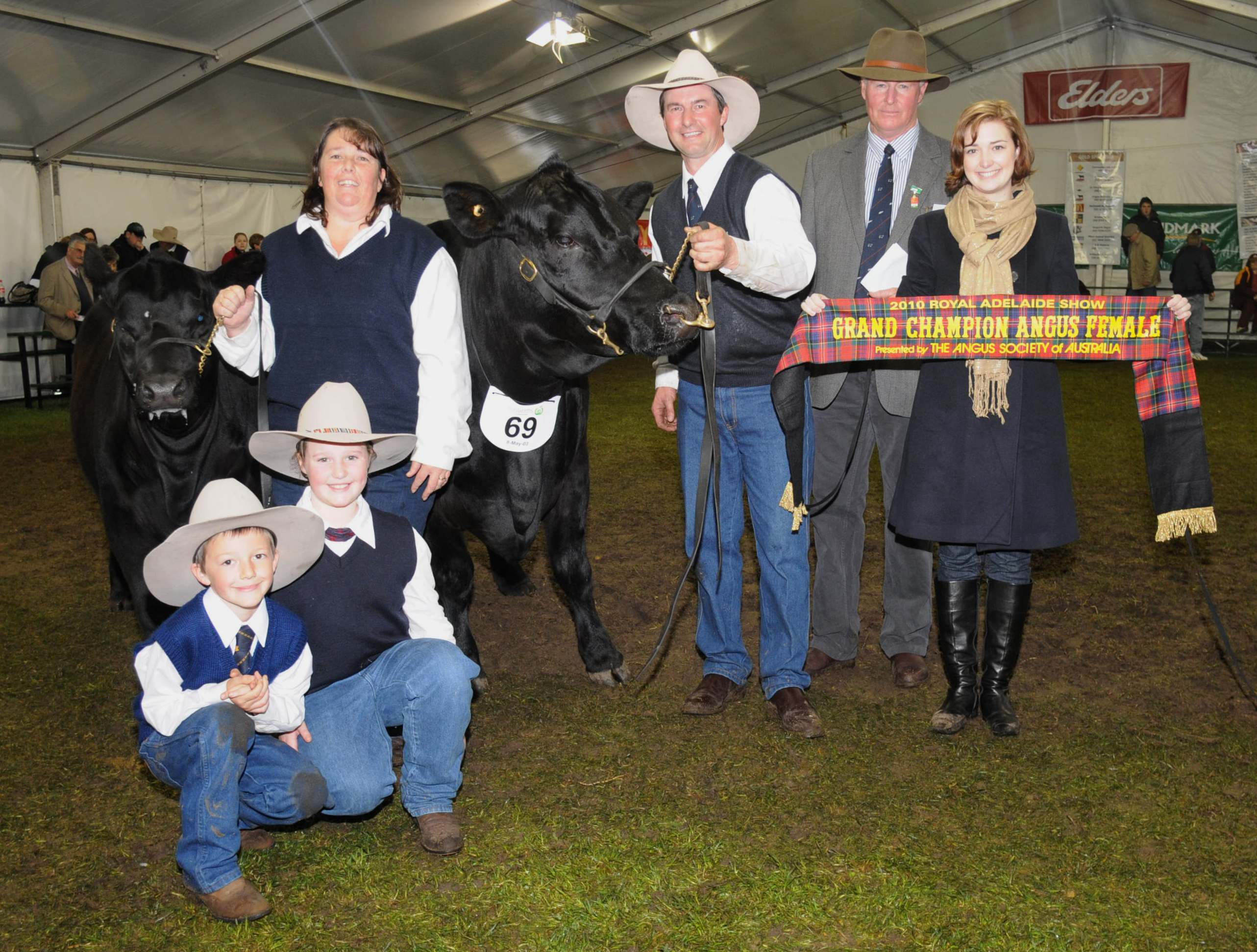 Royal Adelaide 2010 Grand Champion Angus Female