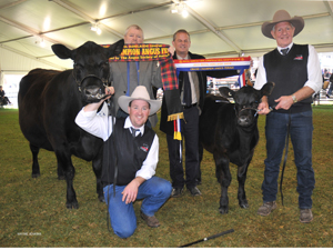 Royal Adelaide 2015 Grand Champion Female