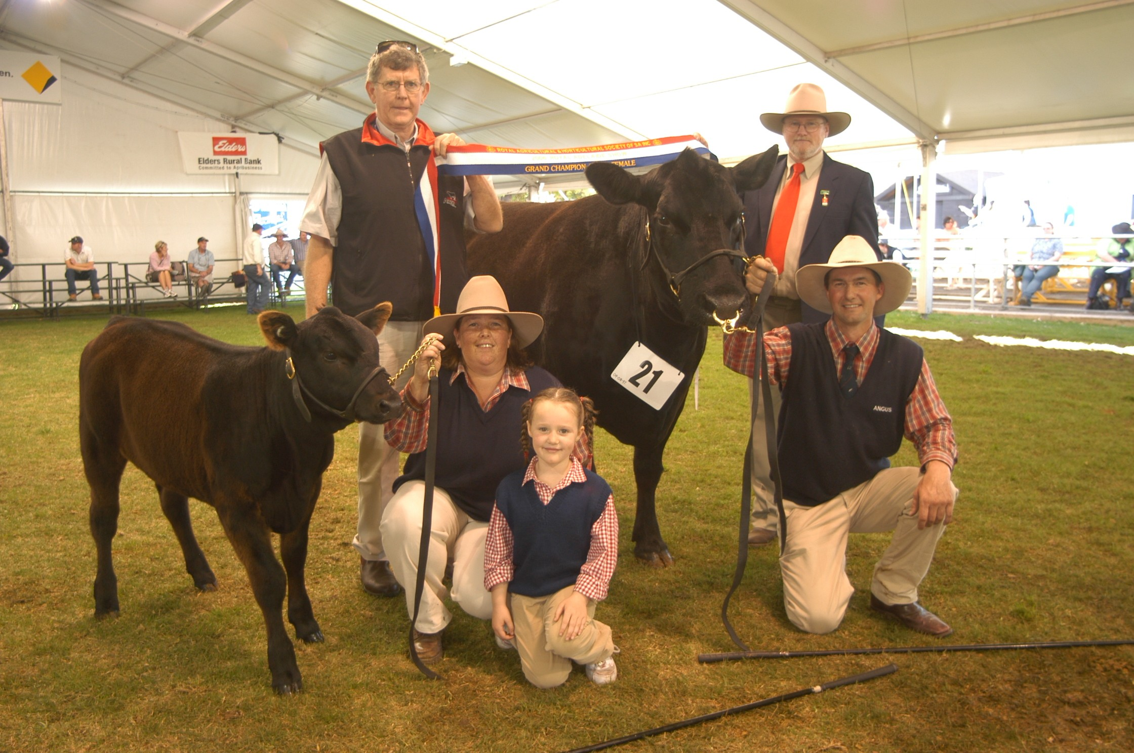 Royal Adelaide 2006 Grand Champion Angus Female