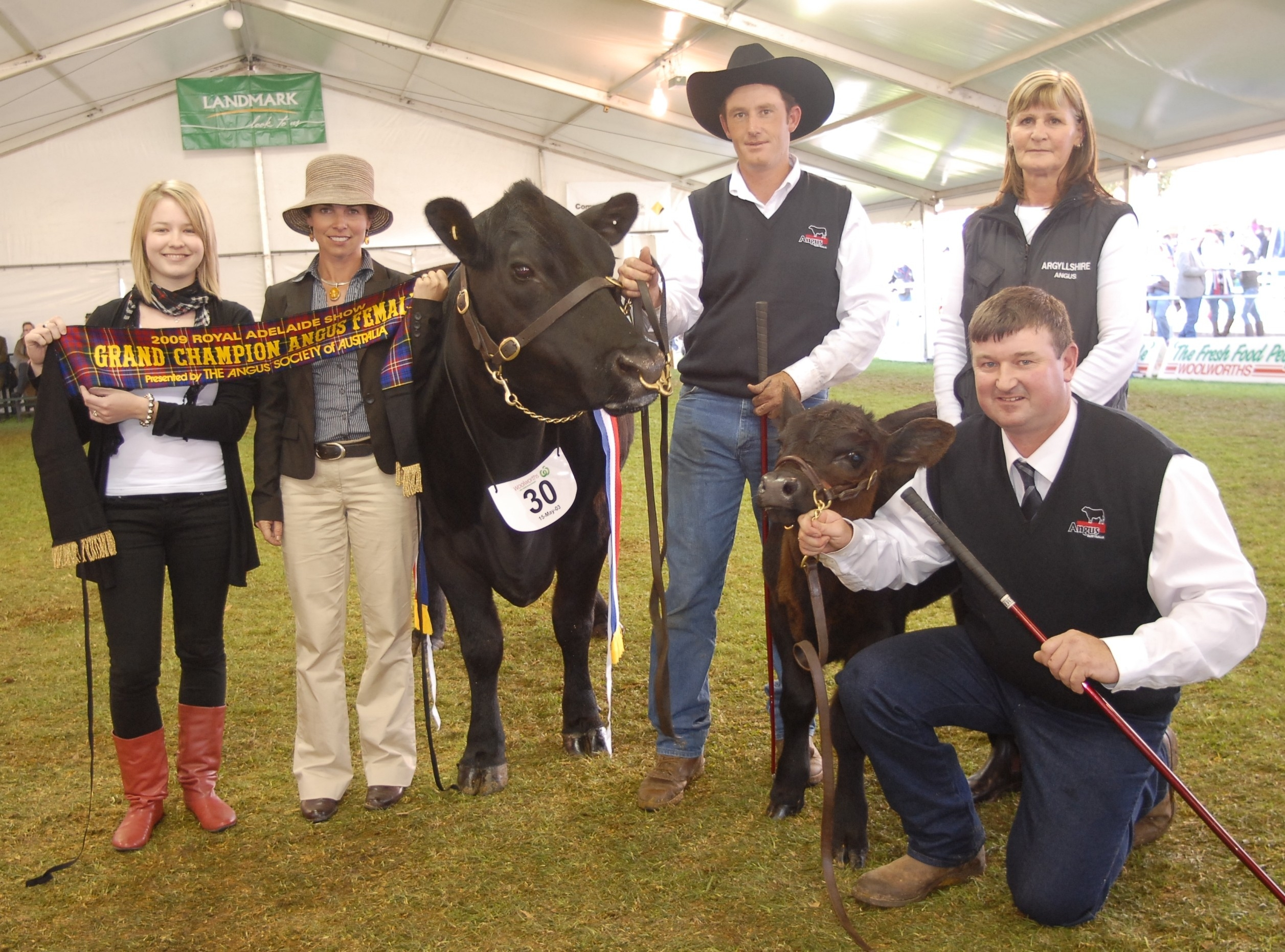 2009 Royal Adelaide Grand Champion Angus Female