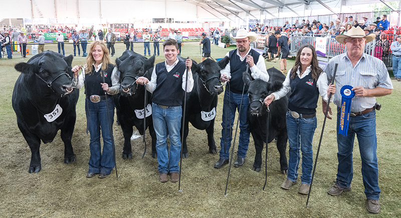 Angus Breeders Group