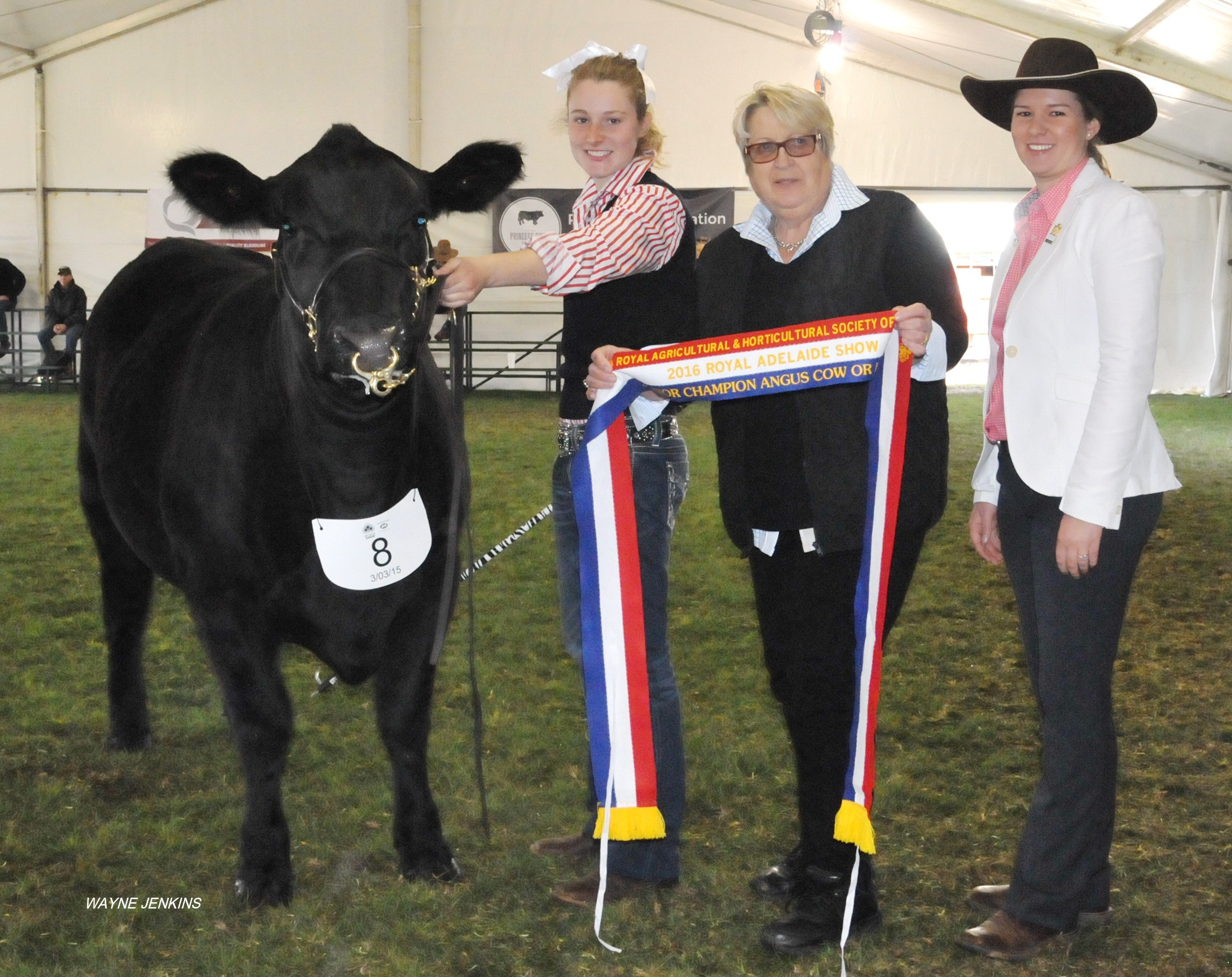 Royal Adelaide 2016 Junior Champion Heifer