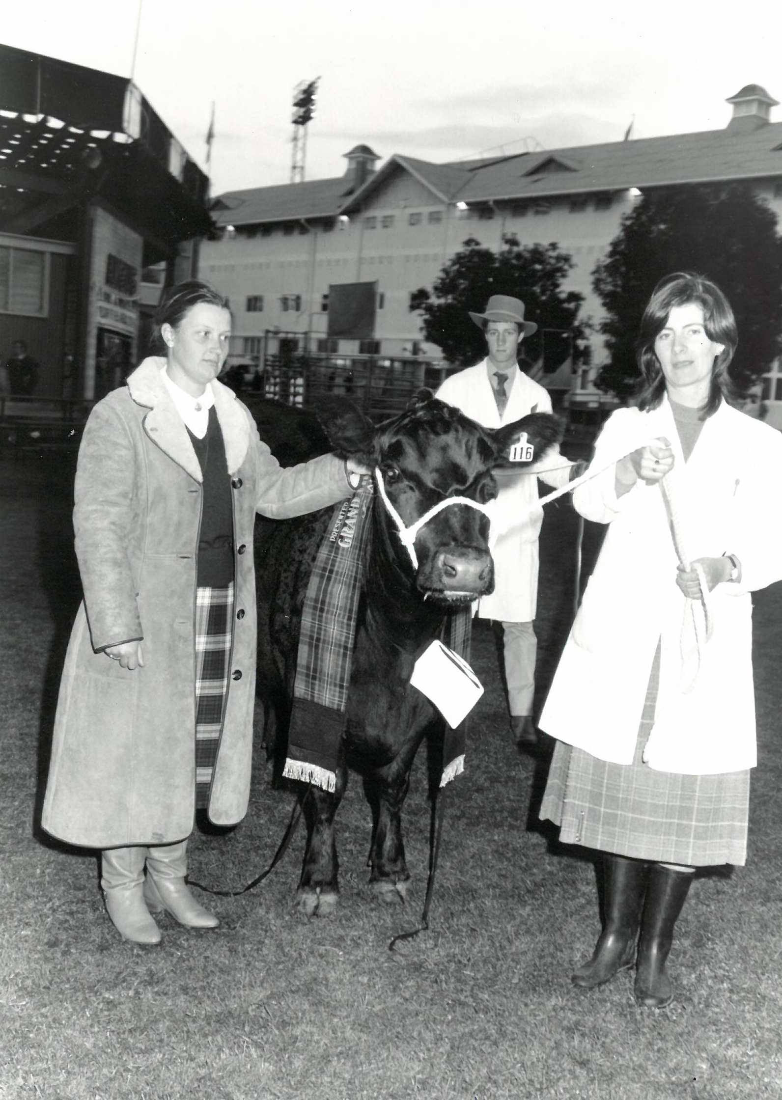 Sally Chappell & Greg Chappell sash the Senior and Grand Champion Angus female Glen Bold Adelaide A16 paraded by Sally Lyons at the 1985 Royal Adelaide
