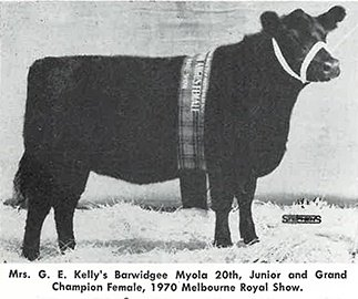 Barwidgee Myola 20th Junior and Grand Champion Female 1970 Melbourne Royal
