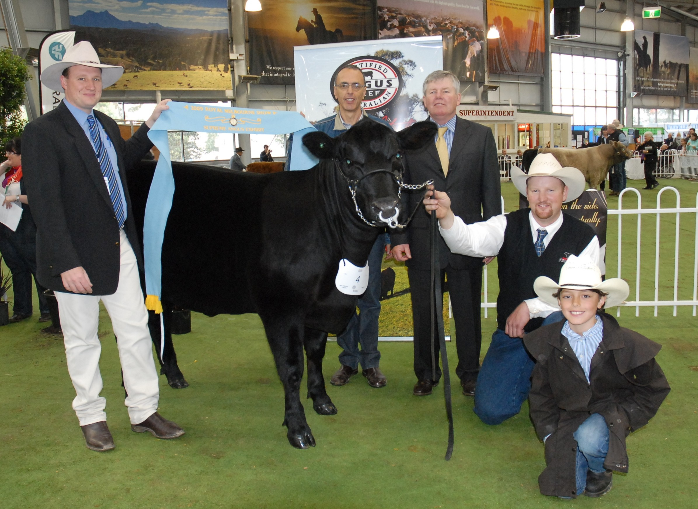 Junior and Grnad Champion Angus Female 2009 Melbourne Royal