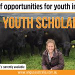 Plenty of opportunities for youth in Ag with Angus Youth Scholarships
