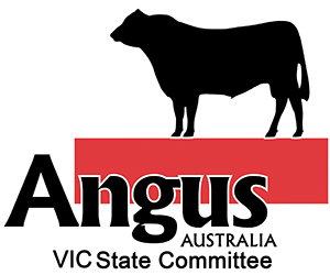 VIC-State-Committee-Logo300