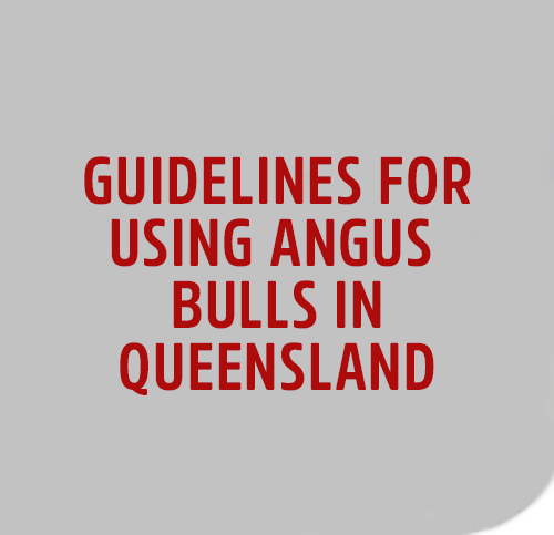 GUIDELINEs-IN-qld