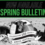 2019 Angus Spring Bulletin is now available