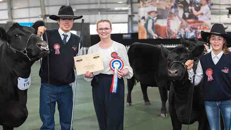Champion Cow Bred & Owned