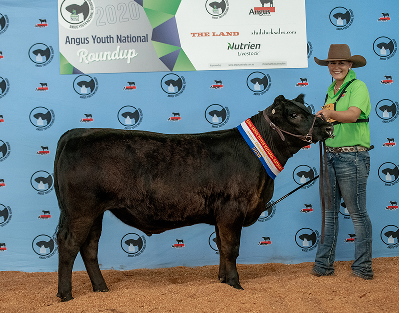Champion Trade Animal Class QUIGLEY P321 exhibited by Georgia Laurie