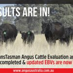 Updated EBVs Available: October 2020