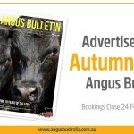 Book your ad in the 2020 Autumn Angus Bulletin!