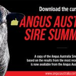 Angus Australia Sire Summary Summer 2020 now available