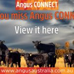 Did you miss the Angus CONNECT event streamed last night?