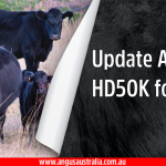 Upgrades to HD50K for Angus Genotyping Platform