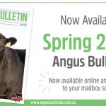 2020 Spring Bulletin available