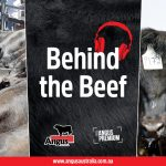 """""""Behind the Beef"""" Episode 4 – The Commercial advantage of Angus Cattle"""