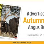 Book your ad in the 2021 Autumn Angus Bulletin!