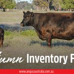 Autumn Inventory Forms