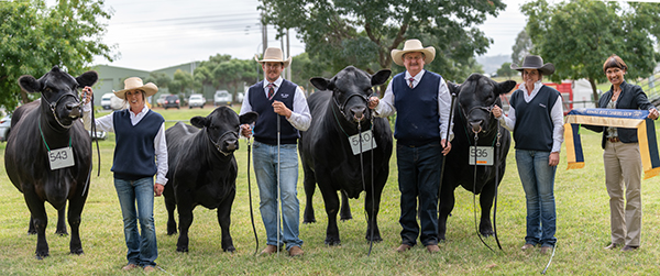 Breeders Group: Pine Creek Angus Stud