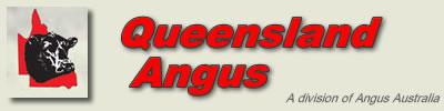 Queensland Angus - Bronze partner