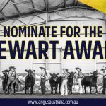 Do you know who has previously received the Stewart Award?