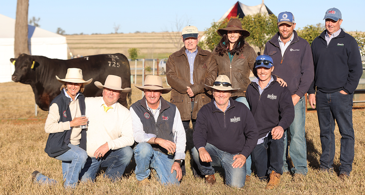 Top selling Texas Undine M508 with heifer calf at foot sold for $65,000. Picture are Texas overseer Hayden Chappel, Michael Glasser, Ray White GTSM, Wendy & Ben Mayne, manager Jamie Gresser and Margo Duncan and her daughters Kerrie Taylor and Pennie Lieb.